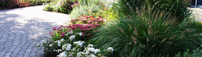 Gartenanlage gemeinde strack for Gartengestaltung 50374