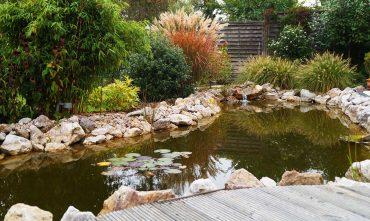 Gartengestaltung-Teichanlage-Strack